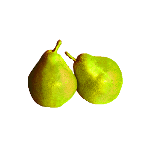 Obst/Früchte