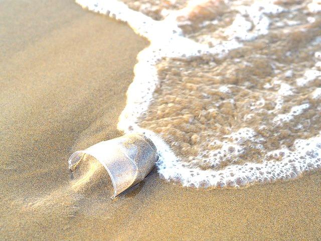 Dem Plastik auf der Spur – schon in jungen Jahren