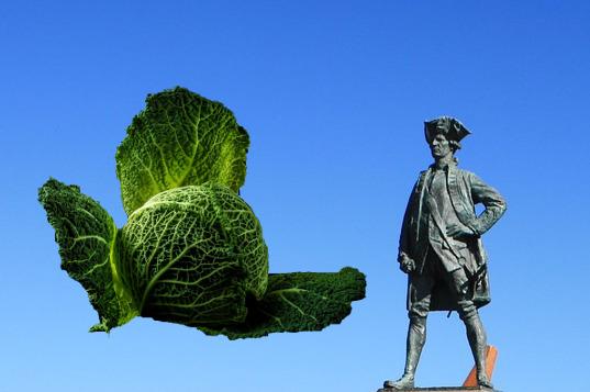 Deutsches Sauerkraut – wertvoll nicht nur für englische Seemänner